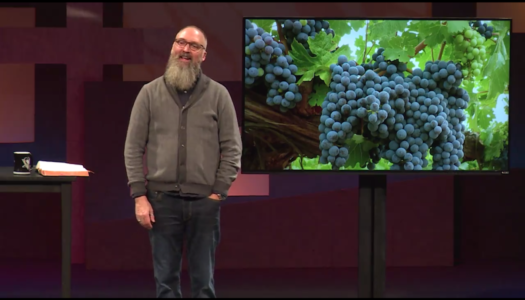 Abide in the Vine (1:07)